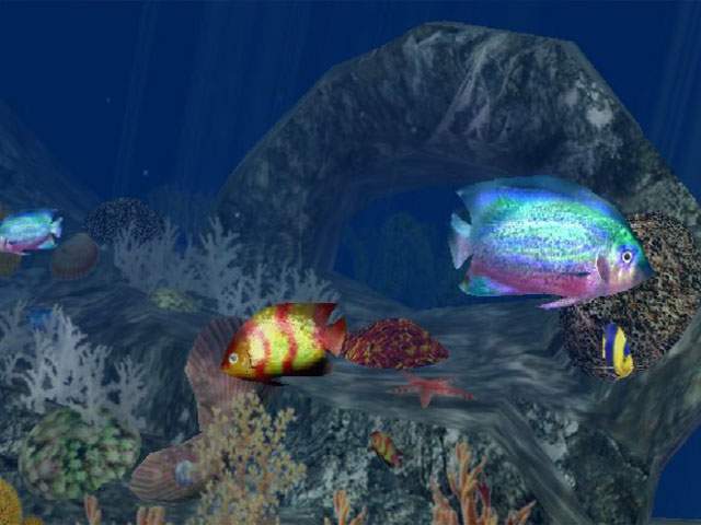 3D Aquatic Life Screensaver: Fish!