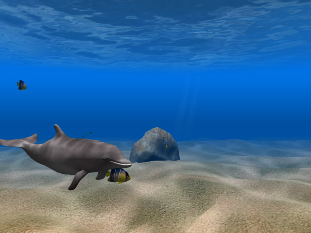 Aquatic Experience of Aquarium Fish Screensaver