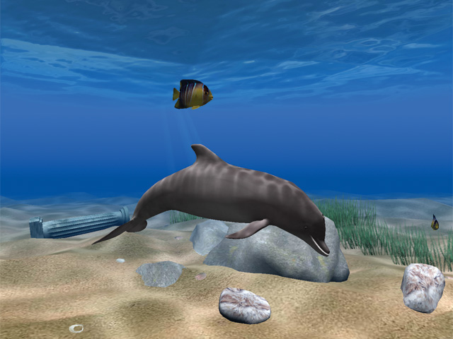 Click to view Dolphin Aqua Life 3D Screensaver screenshots